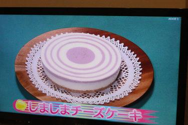 ブルーベリーのしましまチーズケーキ[2021.1.4]