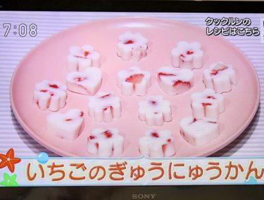 いちごの牛乳かん